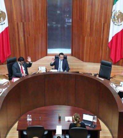 Por falta de confiabilidad en el padrón, suspende TEPJF la elección interna de Morena