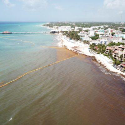Integrantes del Protocolo de Puerto Morelos buscan mecanismos para recuperar el azul turquesa del Mar Caribe que fue afectado por el arribo de sargazo