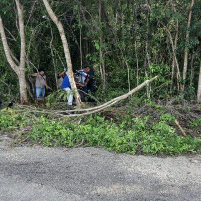 Muere motociclista en carretera Tulum-Cobá
