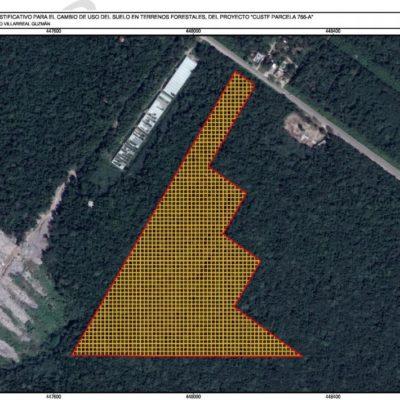 Ingresan proyecto inmobiliario que deforestaría 111 mil metros de selva para construir residencial en Tulum
