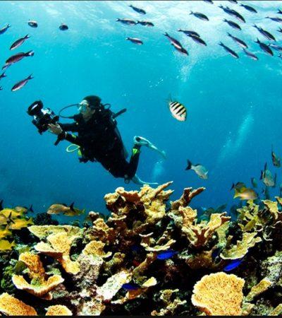 Con 'Scuba Fest' buscan contrarrestar la mala imagen por restricción a arrecifes en Cozumel