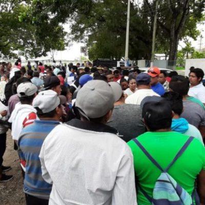 Se manifiestan productores de piña en Chetumal por malos manejos en la Sedarpe