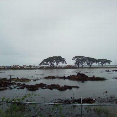 Inundan lluvias el terreno donde se construye la refinería de Dos Bocas en Tabasco