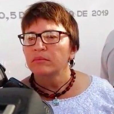 Gestión de Laura Beristain no es bien vista por algunos consejeros distritales de Morena