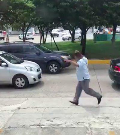 ATAQUE DE ABEJAS EN CANCÚN: Se topan trabajadores con una colmena en la avenida Tulum y terminan correteados