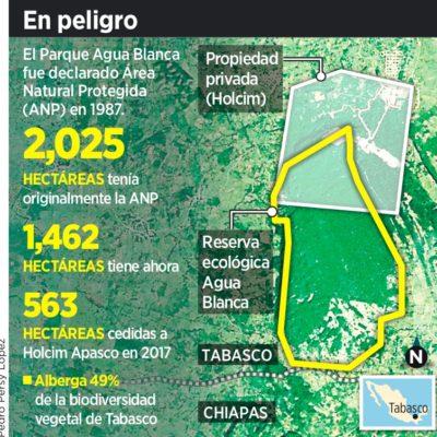 Avalan cementera en Área Natural de Tabasco
