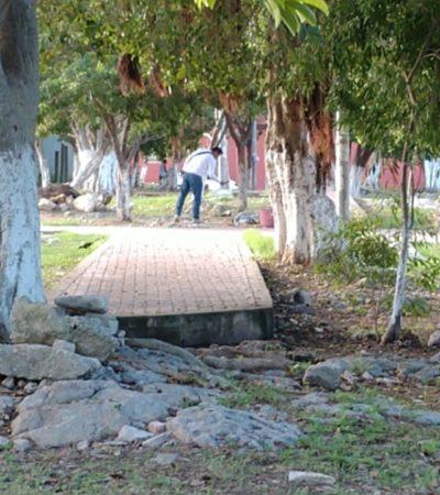 ASESINATO EN LA SM 105: Hallan cadáver con heridas de machete en parque del fraccionamiento Tierra Maya de Cancún
