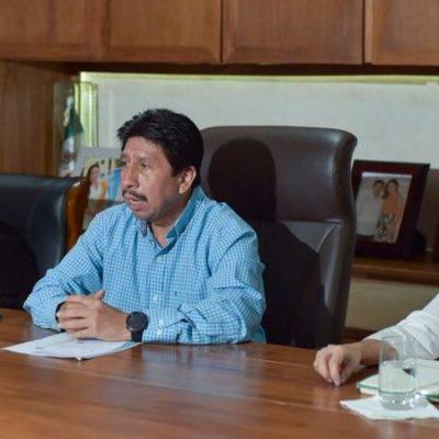 Anuncian campaña de esterilización de mascotas en Tulum con recursos ahorrados por no utilizar pirotecnia durante las fiestas patrias