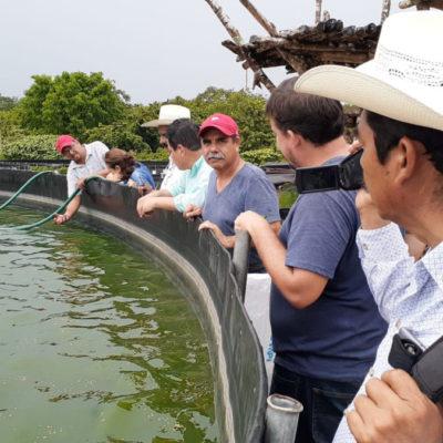Impulsa gobierno de Puerto Morelos apoyo a productores acuícolas locales