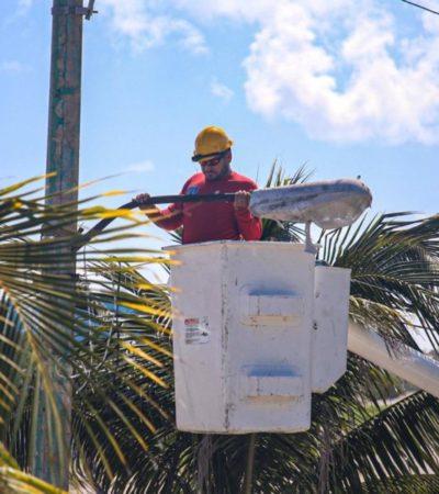 Realizan mantenimiento y reparación de lámparas de la avenida Rueda Medina de Isla Mujeres