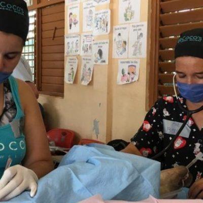 Anuncia Coco's Animal Welfare campaña de esterilización gratuita para perros y gatos del 15 al 18 de noviembre en Playa del Carmen
