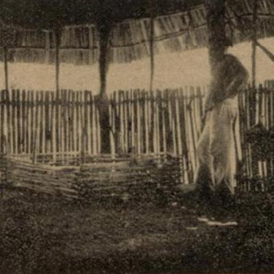 Los finados en la Península de Yucatán: del 'Comité Pro Cementerios' de Pacheco Cruz e hipótesis del origen del Janal Pixán   Por Gilberto Avilez Tax