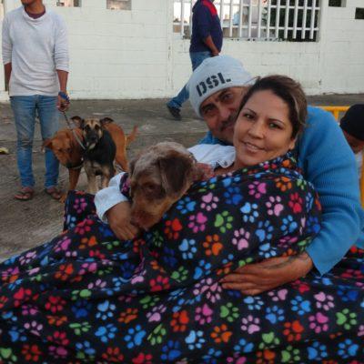 Madrugan cientos en Playa del Carmen para esterilizar a sus mascotas