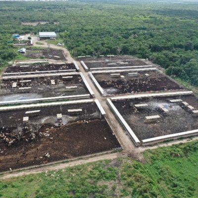 EXHIBEN ACUMULACIÓN DE HECES EN YUCATÁN: Advierten sobre grave riesgo de contaminación por granjas de ganado sin control en la península
