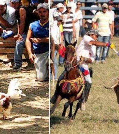 Rompeolas: Le regresan al Congreso de Quintana Roo 'papa caliente'