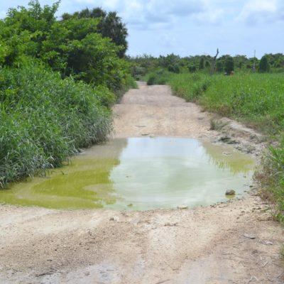 Camino a Isla de la Pasión concluirá en febrero; no usará concreto ecológico