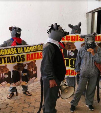 PROTESTA DE 'RATAS' EN EL CONGRESO: Activistas por la transparencia denuncian protección de diputados de Morena a la anterior legislatura en Quintana Roo