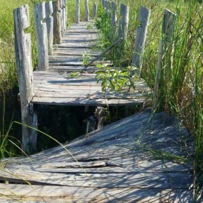 Ejidatarios de JMM invertirán en infraestructura turística de la Laguna Chichankanab