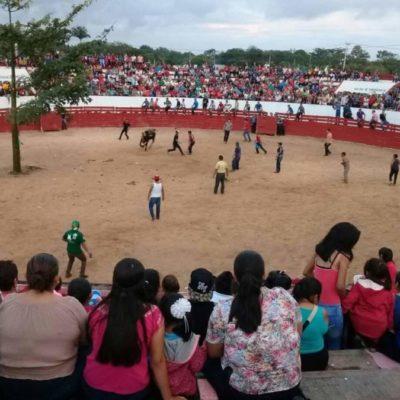 Repudian Médicos Veterinarios de QR al Ayuntamiento de Lázaro Cárdenas por permitir corridas de toros y violentar la Ley de Protección y Bienestar Animal