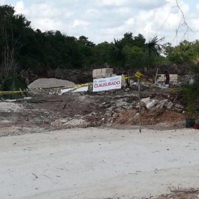 DEVASTAN SELVA EN PLAYA: Ineficacia de la Dirección de Medio Ambiente provoca extensa tala para construir Parque Industrial en Solidaridad