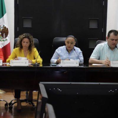 Durante periodo de receso legislativo comisiones atenderán iniciativas presentadas, afirma Cristina Torres
