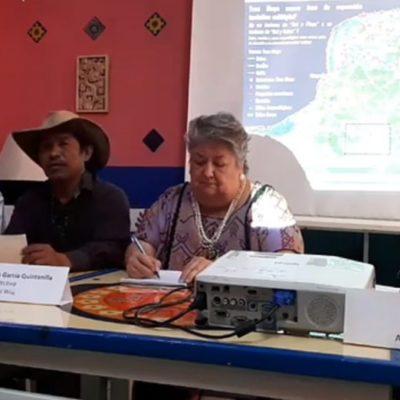 REITERAN RECHAZO AL TREN MAYA: Organizaciones y académicos de la Península advierten riesgos