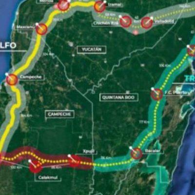 Tren Maya sí afectará población de grandes felinos en la Península de Yucatán: Pronatura