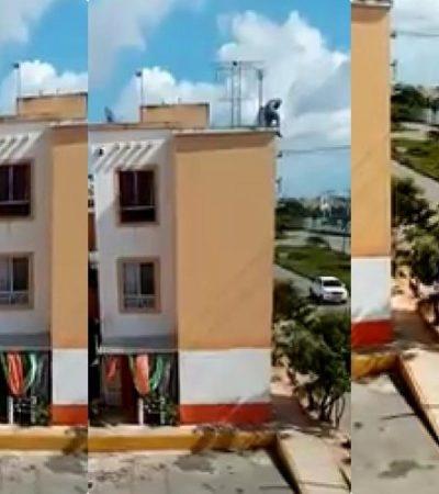 SEGUIMIENTO   Sigue sin aparecer el supuesto ladrón que cayó de un edificio en Villas Otoch Paraíso