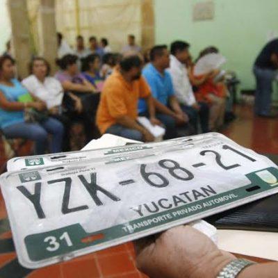 Yucatecos consiguen 51 mil 197 firmas a través de change.org para oponerse al reemplacamiento