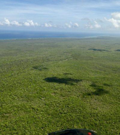 Tres niveles de Gobierno preservan casi 4 millones de has. de selva tropical de Quintana Roo