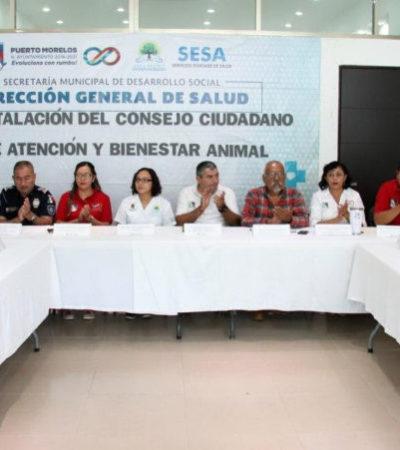 Realizarán propuestas para controlar la sobrepoblación, evitar el maltrato animal y sensibilizar a los habitantes de Puerto Morelos