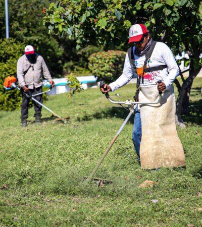 Realizan limpieza de área públicas en colonias populares de Isla Mujeres