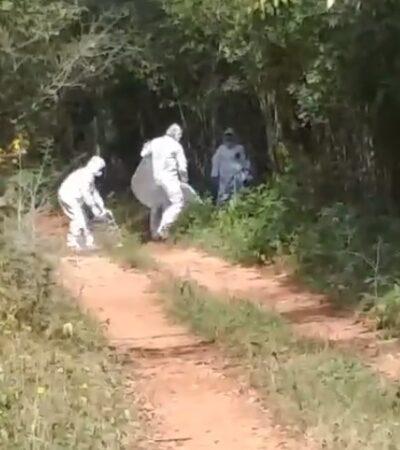 APARECE EMBOLSADO EN BACALAR: Hallan cadáver maniatado de lanchero que trabajaba en la laguna y que estaba desaparecido desde el pasado sábado