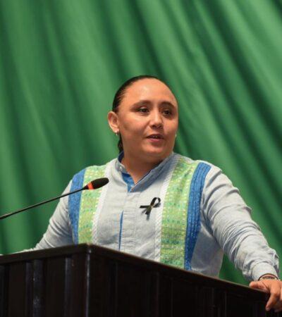 Es necesario que ayuntamientos brinden estímulos fiscales a comerciantes para incentivar la inversión en el sur de QR, afirma Cristina Torres