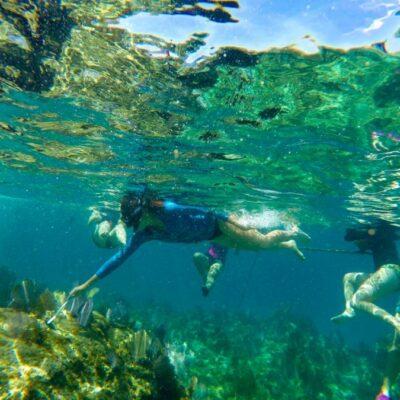 Piden a ciudadanos que se involucren en el rescate de corales con la misma intensidad con que se ha protegido Xcacel y Tajamar