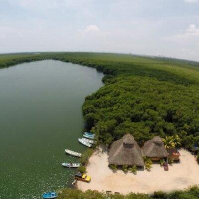 Piden intervención de Profepa por relleno de manglar en la Laguna Chacmuchuc
