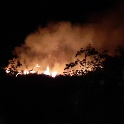 Se queman al menos dos hectáreas de selva en Chetumal