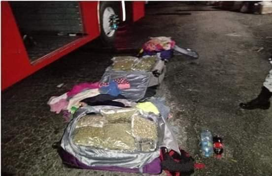Incautan 19 kilogramos de marihuana en frontera con Campeche