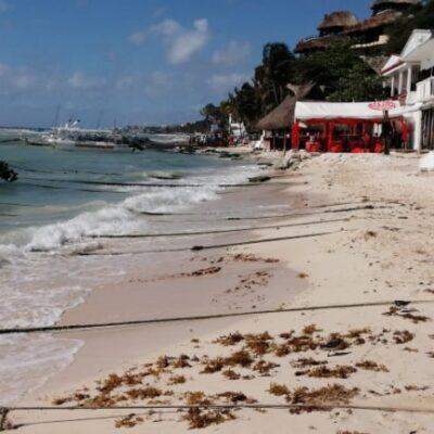 """Lucen playas de Solidaridad limpias y libres de sargazo, luego de recale moderado en """"El Recodo"""""""
