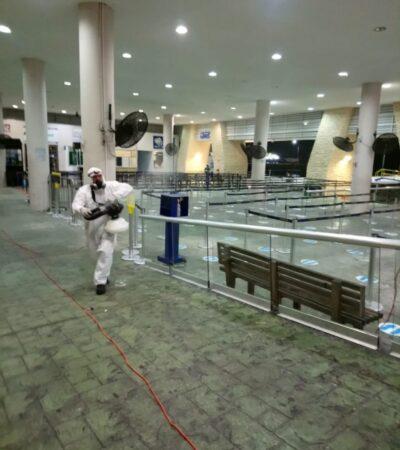 Contrata Apiqroo personal especializado para sanitizar terminales marítimas en QR