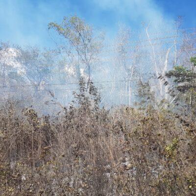 Incendios forestales afectan el servicio de telefonía e Internet en José María Morelos
