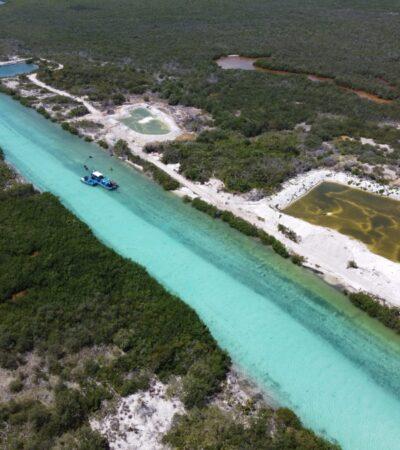 Acusan a la Secretaría de Marina de devastar hectáreas de manglar por trabajos del dragado del Canal de Zaragoza