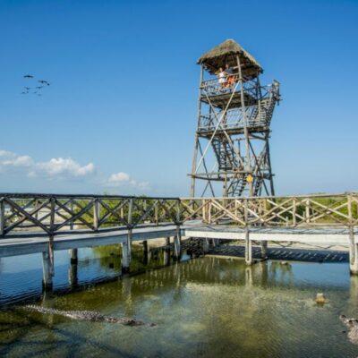 Confía Fundación de Parques y Museos de Cozumel en repetir restablecimiento del destino como en contingencias previas