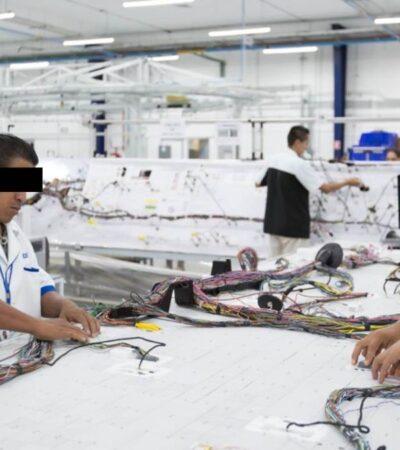 Maquila alemana obliga a mayas a laborar… sin sana distancia ni protección y con 4 casos positivos de COVID-19