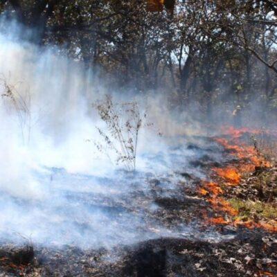 Reportan los primeros conatos de incendios forestales en José María Morelos