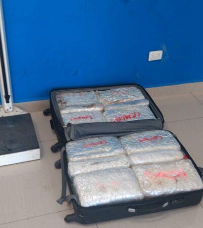 'Olvidan' maleta con 26 kilos de marihuana en ADO de Playa
