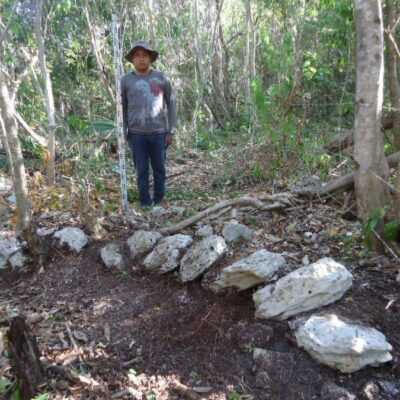 Descubren vestigios arqueológicos en predio donde construirán hotel en Mahahual