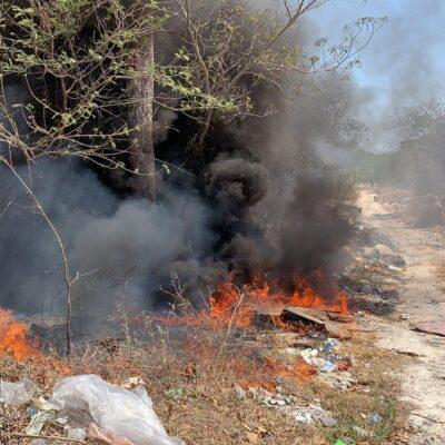 Solicitarán la suspensión de quemas agropecuarias para evitar incendios forestales en QR