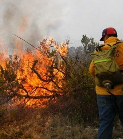 Más de cuatro mil 600 combatientes apagan incendios en medio de contingencia en la Península de Yucatán