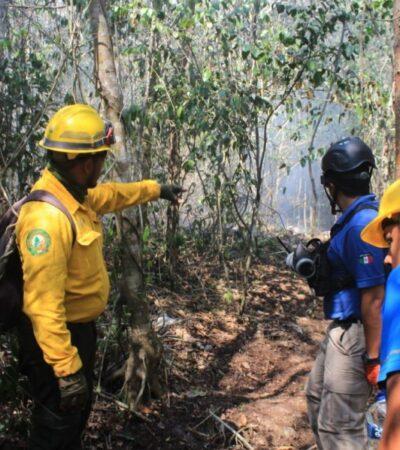 Incendio forestal en Uxuxubi ha consumido más de 30 hectáreas de selva